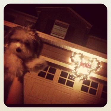 Winnie and the Minnie Wreath