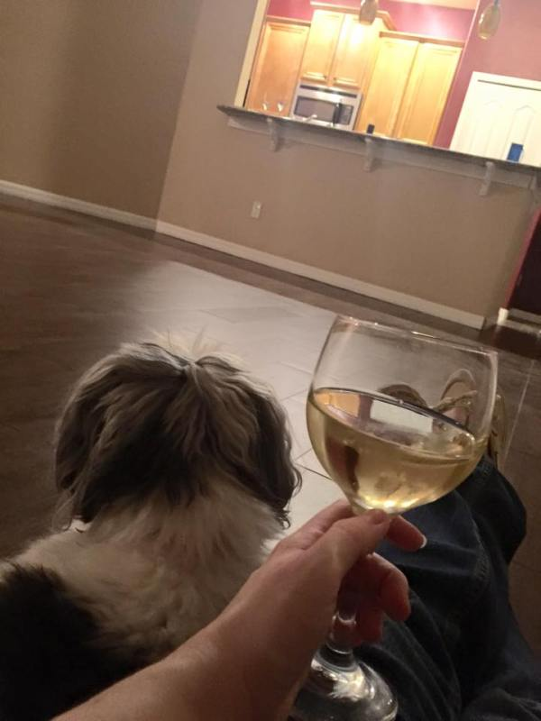 Wide, open space: looking over my land with a little help from Winnie. And wine.